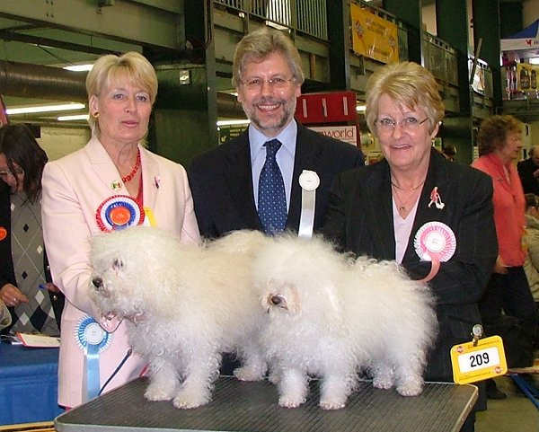 UK Toy Dog Championship 2005